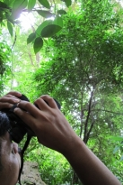 Sir Uly peers through binoculars to get a closer look at a tree's leaves