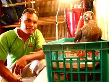 Kuya Jun, Booby's rescuer, checking in on our patient
