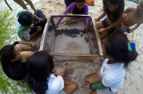 EO Alia and EO Elaine briefing the campers before releasing 37 green sea turtle hatchlings