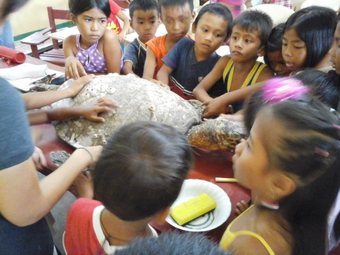 Curious kids checking out the stuffed hawksbill turtle.